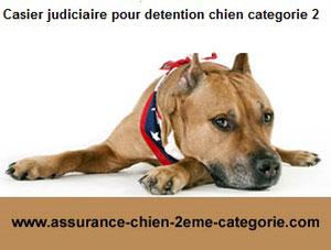 Casier judiciaire et chien de catégorie 2